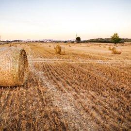 La nostra soluzione per l'agricoltura